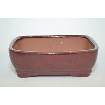 Bonsai Ceramic Pot 8