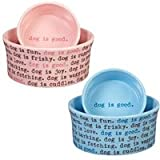 DogIsGood DI2786 05 60 Dogism Dish Bowl, Angel Falls, 14-Ounce