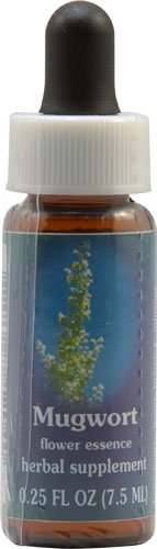 Flower Essence Mugwort Supplement Dropper -- 0.25 fl oz - ()