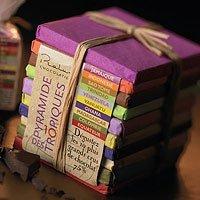 - Pralus Pyramid - Mini Pyramide Des Tropiques - 10 Dark Chocolates From Around the World