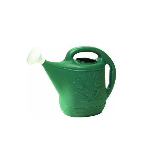2 Gallon Watering Can Green (6) by   Novelty MFG