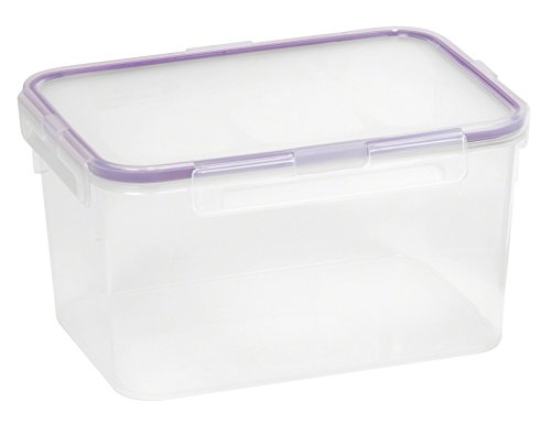 Snapware 10.8-Cup Airtight Rectangle Food Storage Container, Plastic ()