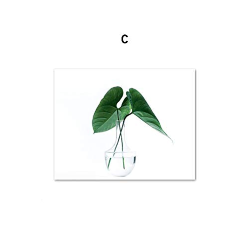 - Tropical Monstera Leaf Plant Nordic Posters and Prints Wall Art Canvas Painting Scandinavian Wall Pictures for Living Room Decor,50X70 cm No Framed,C
