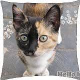 cute red and black cat - Throw Pillow Cover Case (18