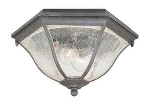 Commercial Outdoor Ceiling Lighting