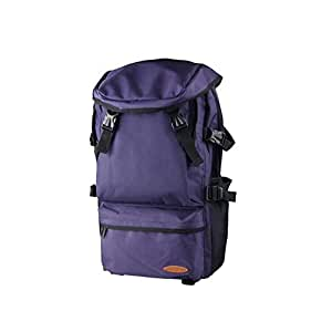 Asdfnfa Travel Backpack Mountaineering Bag Large Capacity Luggage Outdoor Sports Bag (Color : Purple)