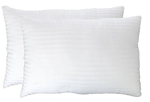 deluxe-queen-pillows-2-pack-hypoallergenic-plush-down-alternative-bed-pillow-super-soft-poly-fiber-w