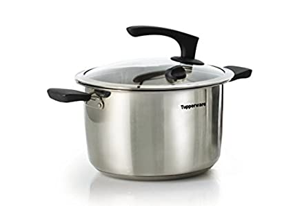 Buy Tupperware Inspire Series Stainless Steel Casserole With Lid