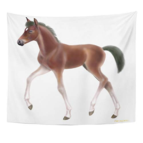 (Semtomn Tapestry Artwork Wall Hanging Colt Thoroughbred Horse Foal Gu Duck Filly Baggu Cute 50x60 Inches Home Decor Tapestries Mattress Tablecloth Curtain Print)