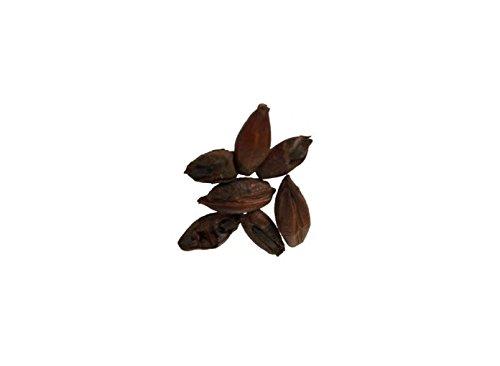 Malt - Briess - Black (Roasted) Barley - 5 lb Bag - Black Barley