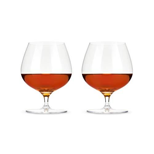 Viski 5 Inch Wingback Brandy Glasses