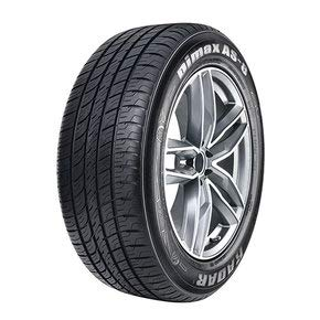 Radar Tires Dimax AS-8 Touring Radial Tire - 245/45ZR20 103W (Best High Mileage Tires)