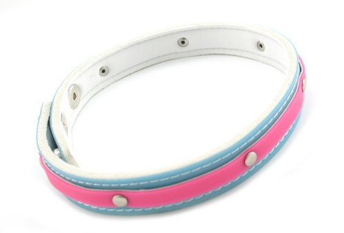 Fresh Collar With Snaps, 3 4-inch, Pink bluee