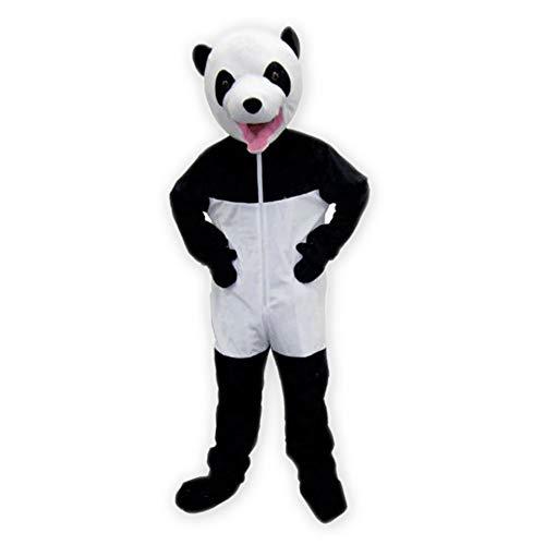 Giant Panda - Adult