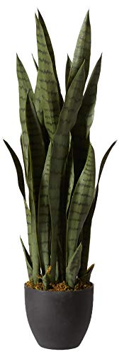Nearly Natural 4855 Sansevieria Plant with Black Planter, - Tree Snake Green