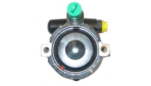 Lizarte 04.07.0102 Hydraulic Pump steering system