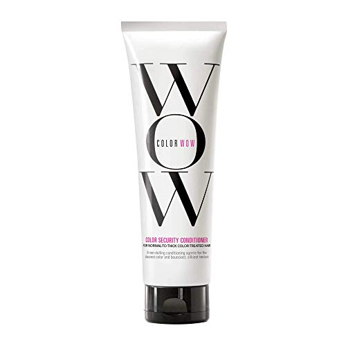 Color Wow Color Security Conditioner, Normal to thick Hair, 8.4 Fl Oz (Best Conditioner For Normal Hair)