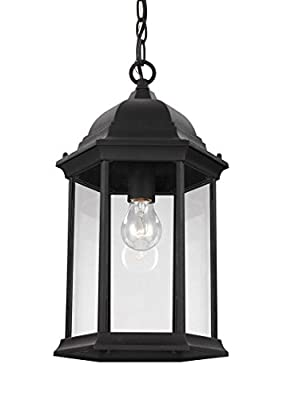 Sea Gull Lighting 6238701-12 Sevier Outdoor Clear Glass Pendant in Black