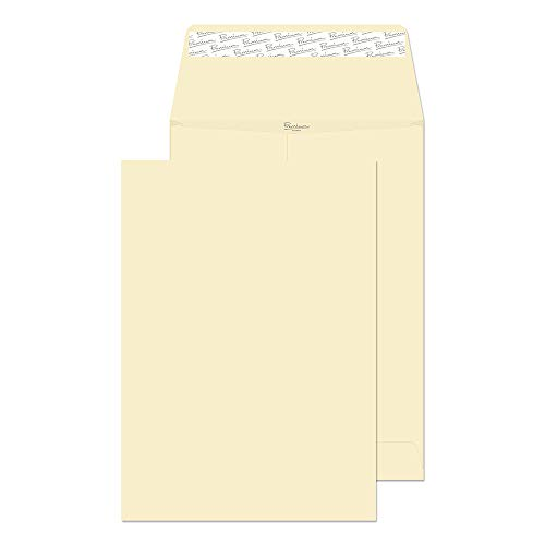 (Blake Premium Business Open End Expansion Envelopes, 9 x 12 3/4 x 1