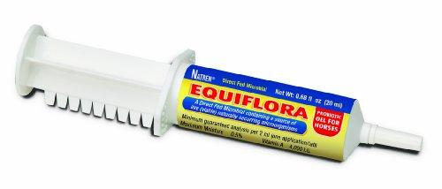 Natren EquiFlora Probiotic Gel – 20 ml Syringe, My Pet Supplies