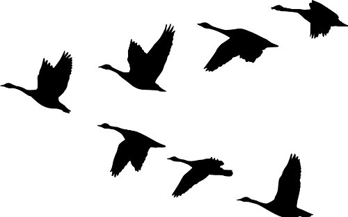 Geese Decal - 3