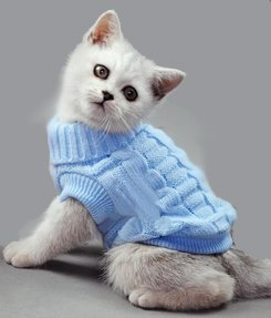 Blue Plain Knitted Cat Kitten Pet Jumper Sweater Knitwear – 6 Sizes Doggie Style Store