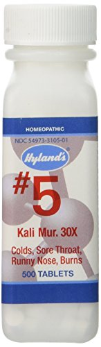 Flu Medicine Homeopathic (Hyland's Homeopathic Tablets Cold & Flu Medicine 500 Tablets)
