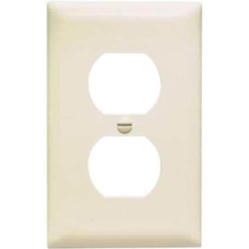 Gang Duplex Outlet - 2