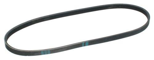 ContiTech Multi Rib Belt W0133-1664730-CON