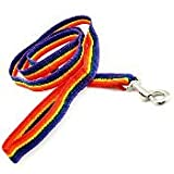 Rainbow Nylon Leash - 6' 1""