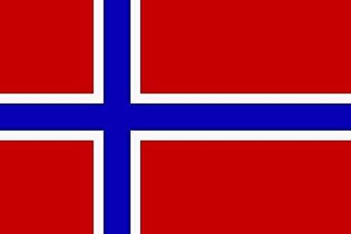 U24 Aufkleber Norwegen Flagge Fahne 12 X 8 Cm Autoaufkleber Sticker Auto