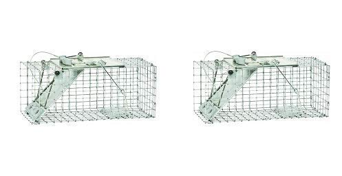 Havahart 1083 Easy Set One-Door Cage Trap for Squirrels and Small Rabbits (Pack of 2)
