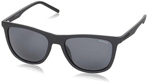Polaroid Sonnenbrille (PLD 2049/S) Matt Black