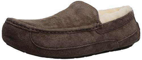UGG Men's Ascot Slipper, Espresso, 08 M US ()