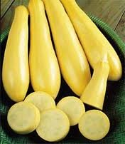 Seeds and Things Straightneck Summer Squash 25 Seeds
