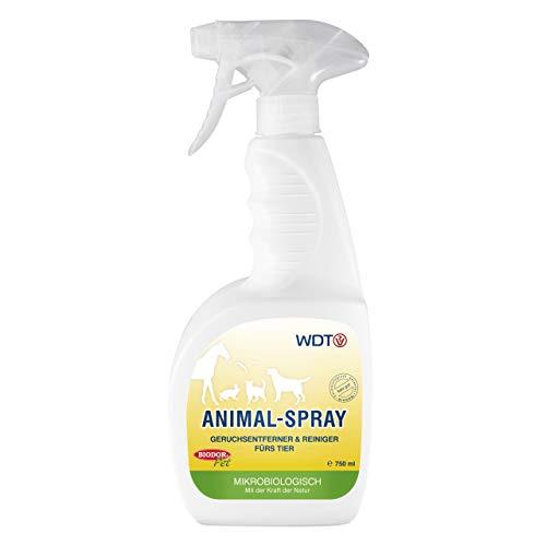 Biodor Pet Animal Hygiene Spray 750ml Geruchsentferner Hund
