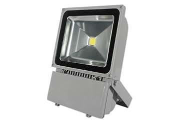 Laykor 100 Watt (100W) LED Weatherproof Floodlight Outdoor