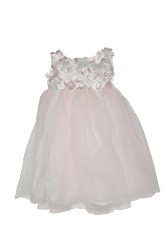 Biscotti Baby Girl's Infant Flower Frolic Ballerina Dress, Ivory/Pink - 24M
