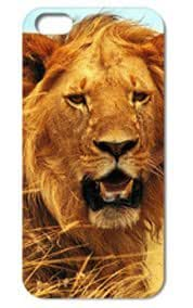 Fashion The Lion Pattern Protective Hard Case Cover For iPhone 5 5S #006