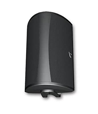 Definitive Technology NECA-AW 6500 Outdoor Speaker