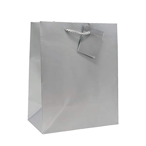 Silver Gift Bag (Allgala 12PK Value Premium Solid Color Paper Gift Bags)