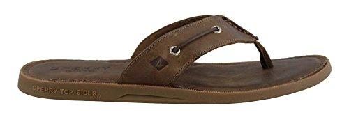 Sperry Top-Sider Men's a/o Sandal Thong (Box) Flip Flop, Dark Brown, 13 M US