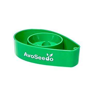 AvoSeedo Bowl Grow your own Avocado Tree Evergreen