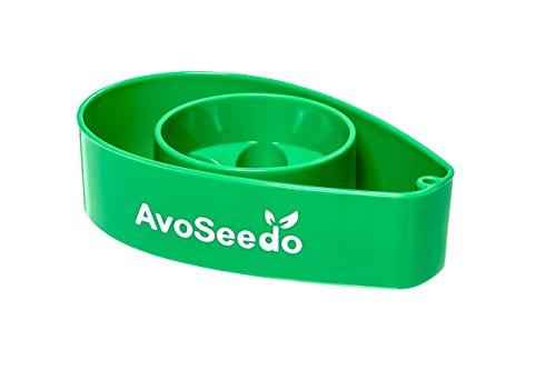 AvoSeedo Avocado Evergreen Perfect Growing product image