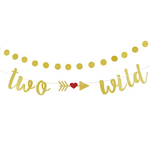 Two Wild Banner with 25 Gold Circle Garlands Two Wild Cake Topper for Two Years Boys or Girls Birthday Party 2 Year Old Baby Party Decorations (2 Year Old Little Girl Birthday Party)
