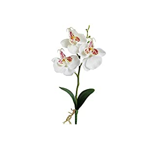 Liliy-luckly Artificial Orchid Flowers Artificial Butterfly Orchid Silk Bouquet Wedding Home Decoration,White 75