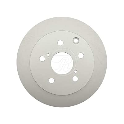 Raybestos 980483FZN Rust Prevention Technology Coated Rotor Dih Parking Brake: Automotive