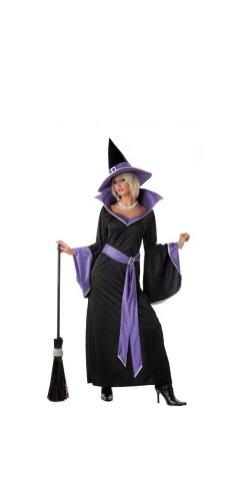 California Costumes Women's Incantasia, The Glamour Witch,Black/Purple,Medium Costume