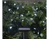 Smart Solar String Lights 30 LED White Stars