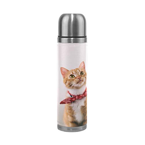 (Vacuum Cup Orange Tabby Cat Stainless Steel Water Bottle Genuine Leather Insulated 18/8 304 Travel Mug 14oz Double Walled Thermos for Sport Events)